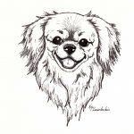 smiling_tibbie